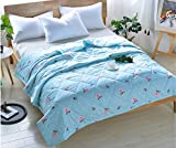 BEIRU Summer Cool And Lively Printed Aloe Cotton Is The Core Bed Linen In Summer Clean Quilt Air Conditioner ZXCV (Color : 1, Size : 100150cm)