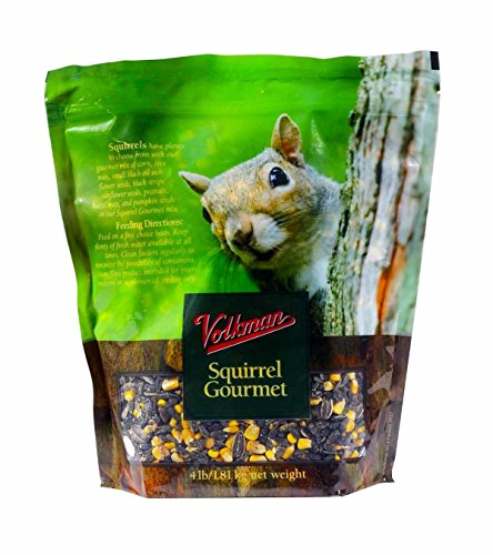 Volkman Seed Small Animal Squirrel Gourmet Mix Healthy Formulated Diet Food (Kaytee Squirrel)