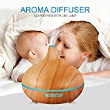Air Humidifier Essential Oil Diffuser Aroma Lamp Aromatherapy...