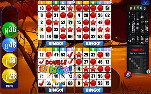 BINGO Absolute! Juego de Bingo Gratis!: Amazon.es: Appstore para Android