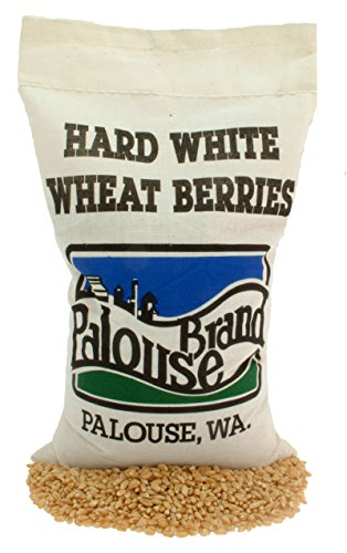 Hard White Wheat Berries | Non-GMO Project Verified | 100% Non-Irradiated | Certified Kosher Parve | USA Grown |Identity Preserved (We tell you which field we grew it in) É