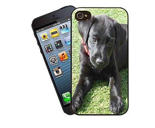 Hund 015 Telefon Fall - passen diese Abdeckung Apple Modell iPhone 4 / 4 s - von Eclipse-Geschenk-Ideen