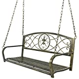 Nova Microdermabrasion Patio Metal Hanging Porch Swing Chair Bench Seat Outdoor Furniture with Hanging Iron Chains,Antique Bronze Finished,2 Person Review