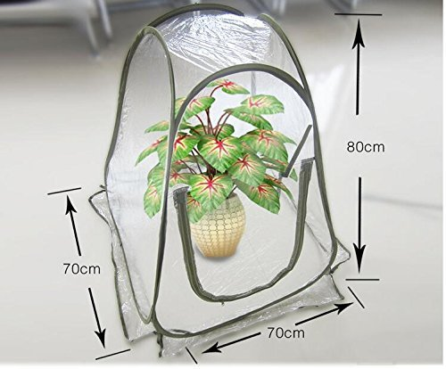 Pop Up Backyard Greenhouse Cover For Cold Frost Protector Gardening Plants by Unknown