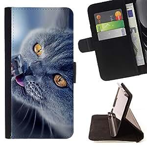 Momo Phone Case / Flip Funda de Cuero Case Cover - British Shorthair azul;;;;;;;; - Samsung Galaxy Note 3 III
