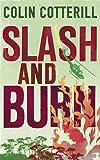 Slash and Burn (Dr. Siri Mystery)