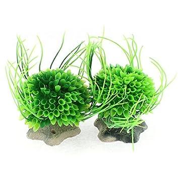 Planta de Plástico Forma bola de la flor verde del ornamento del acuario DealMux: Amazon.es: Productos para mascotas
