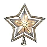 Kurt Adler 10 Light 10-Inch 5 Point Large Star with Smoke Capiz Treetop with 2-Inch Thick Gold Paint Finish