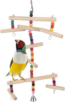 Migliori 7 Altalene per uccelli