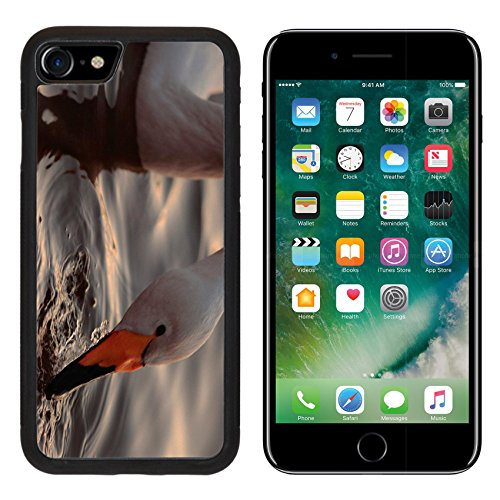 msd-premium-apple-iphone-7-iphone7-aluminum-backplate-bumper-snap-case-a-closeup-portrait-of-whooper