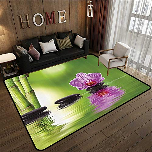 Contemporary Spa - Contemporary Synthetic Rug,Spa Decor Collection,Spa Floral Decorating Summertime Holidays Exotic Positiveness Bouquet Picture Pattern,Green Black L 78.7