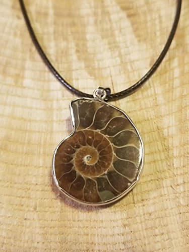 (Fossil Ammonite Pendant Leather Necklace Primitive Natural Shell Jewelry Hippie Boho Handmade Earth Stone (N429))