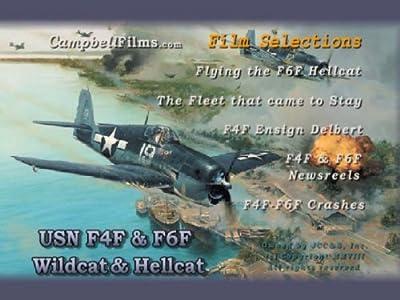 Navy F-4F Wildcat & F-6F Hellcat WW2 Warbird Aircraft Carrier Crashes old films DVD by F4F F6F