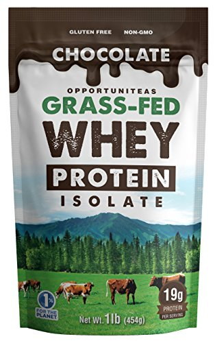 Chocolate Protein Powder - Premium Ingredients - No Artificial Chemicals or Flavorings - Grass Fed Whey Isolate + Rich Cacao + Organic Sugar - Light & Delicious Taste - Gluten Free & Non GMO - 1 lb ()
