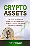 img - for Cryptoassets: Your Guide to Understand Blockchain, Cryptocurrency, Investing, Trading and Mining the Internet for Wealth book / textbook / text book