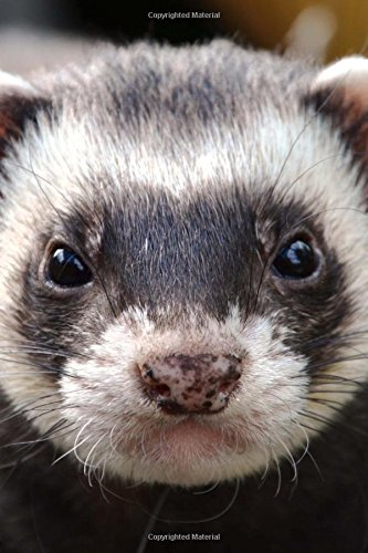 Download Look at that Face!  Serious Ferret Pet Journal: 150 Page Lined Notebook/Diary PDF