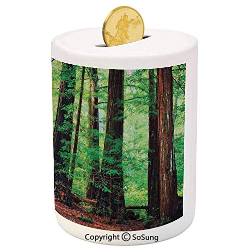 - Woodland Decor Ceramic Piggy Bank,Redwood Trees Northwest Rain Forest Tropic Scenic Wild Nature Lush Branch 3D Printed Ceramic Coin Bank Money Box for Kids & Adults,