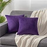 DEZENE 18x18 Throw Pillow Cases Purple: 2 Pack Cozy