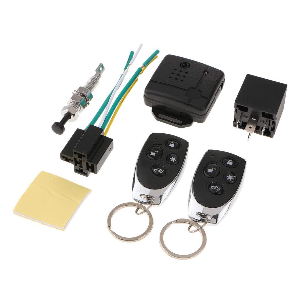 Homyl Sistema de Alarma de Bloqueo de Cierre Centralizado de Puerta de Coche Auto