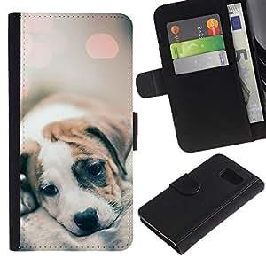 All Phone Most Case / Oferta Especial Cáscara Funda de cuero Monedero Cubierta de proteccion Caso / Wallet Case for Sony Xperia Z3 Compact // bebé lindo luces borrosas de cachorro de piel