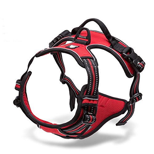 Handle Chest Zinc (Pettom No-Pull Dog Harness Safe Control Reflective Outdoor Adventure Pet Vest Harness with Padded Handle (L(Chest Size:27