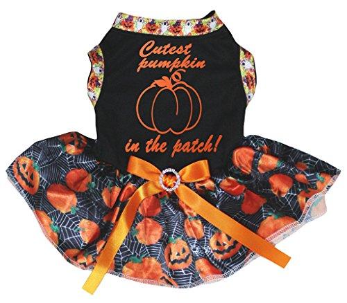 Petitebella Puppy Clothes Dog Dress Cutest Pumpkin Black Top Pumpkin Tutu (Cutest Dog Costume)