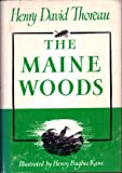 img - for The Maine Woods book / textbook / text book