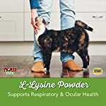 NOW Pet Health, L-Lysine Supplement, Powder, Formulated for Cats, NASC Certified, 8-Ounce 9