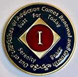 ✅ Simply Minimal ™ NA/AA Narcotics Anonymous Clean Time Medallion,NA Coins,key tag 1 Year Clean Time Token - Birthday Anniversary Recovery Gift Recovery Custom Made 1 Year Birthday Token