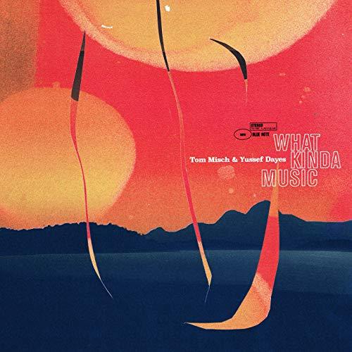 What Kinda Music: Tom Misch;Yussef Dayes: Amazon.es: Música