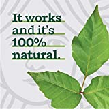 Marie's Original Poison Ivy Soap Bar | All Natural