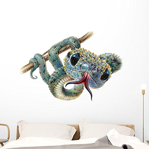 Bush Viper Snake Wall Decal by Wallmonkeys Peel and Stick Graphic (48 in W x 31 in H) - Snake Decals Wall