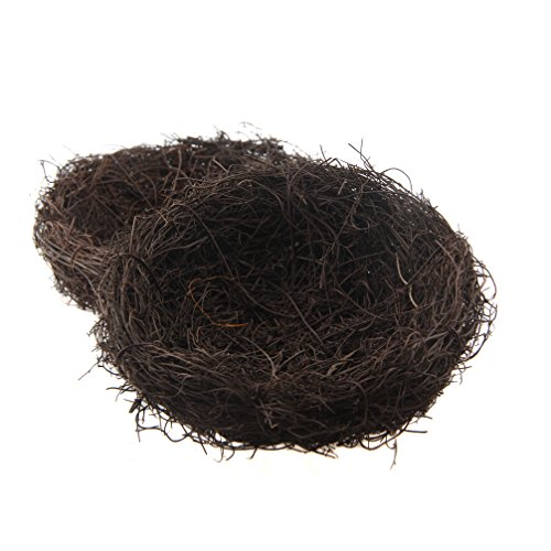 Superior Emours Natural Bird Nest Woven Vine Bird Finch  Amazing Design