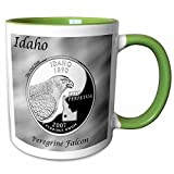3dRose Bob Kane Photography Coins - State Quarter Idaho - 11oz Two-Tone Green Mug (mug_120157_7)