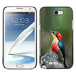 Planetar® ( Green Nature Spring Tropical Songbird ) SAMSUNG Galaxy Note 2 II / N7100 Fundas Cover Cubre Hard Case Cover