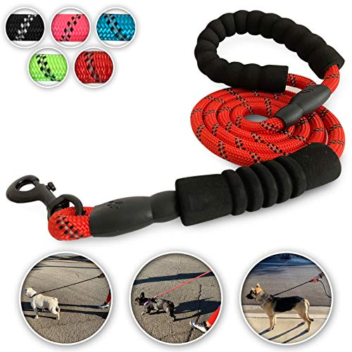 Coronado Collective Dog Leash 5FT Double Padded Handle, Heavy Duty Nylon Rope, 360 Tangle-Free, Highly Reflective Leashes for Small Medium & Large Dogs (Red) ()