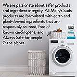 Molly's Suds Original Laundry Detergent Powder 120