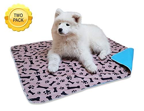 Paws On Trip XL Washable Pee Pads (2 Pack) - Extra Large Reusable Waterproof Mat for All Dogs - Essential for Potty Training Your Puppy and Saving House from Wee Marks and Litter Spots