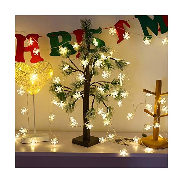 Catena Luminosa,Luci natalizie a forma di fiocco di neve,per Natale,giardino,terrazza,camera da letto,feste,interni ed esterni,luce bianca calda 2 spesavip