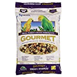 Hagen B2812 Gourmet Small Parrot Seed Mix, 1 Kg, 2.2-Pound