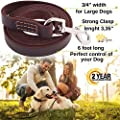 ADITYNA - Heavy Duty Leather Dog Leash 6 Foot x 3/4 inch - Strong & Soft Leather Leash for Large and Medium Dogs - Best Training Leash