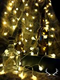 REMOTE CONTROL STRING LIGHTS WITH TIMER - Ambiance Lighting - Fairy lights - Great for use in Garden, Patio, Pathway, Bedroom, Lounge - Suitable for a Party, Wedding - 10 Meters/33ft - 100 LED LIGHTS