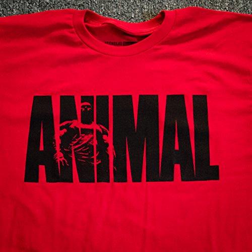 Buy universal tshirts men