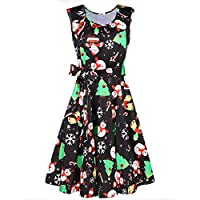 Styleword Women's Christmas Sleeveless Flare Cocktail Dress