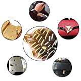 Nickel Plated Tip Screws Pointed Cross Slot Leather Accessories for Belt Buckle Wallet Handbag Purse Includes Screwdriver (Silver)