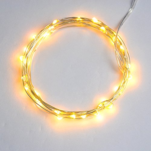HKSL Micro LED 20 Warm White Color String Lights with Timer,Battery Operated on 7ft Long Silver Color Ultra Thin String Wire