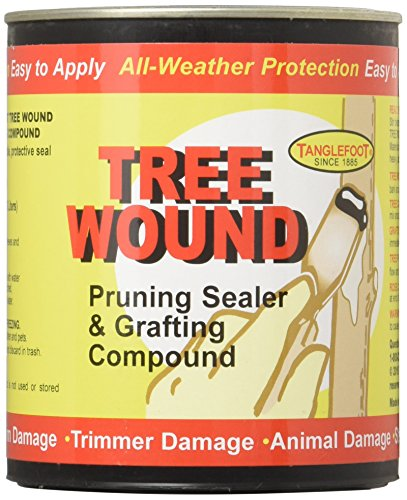 tanglefoot-tree-wound-pruning-sealer-grafting-compound