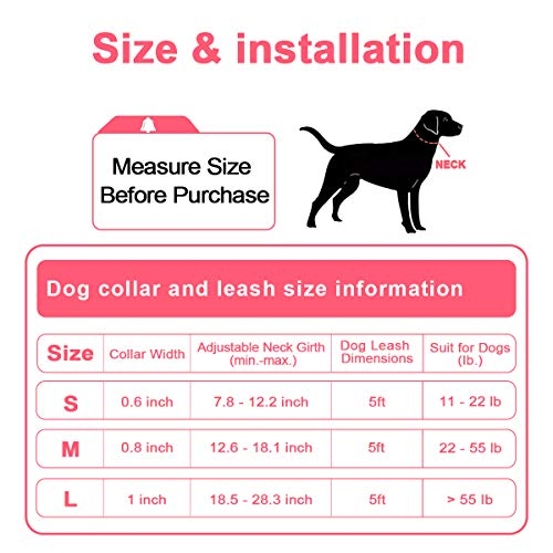 QQPETS Set Adjustable Personalized Collars for Puppy Large