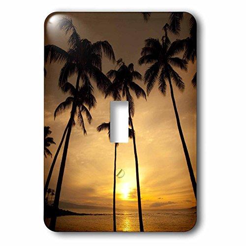 3dRose LLC lsp_89745_1 Hawaii Kapalua Beach Sunset and Palm Trees Us12 Dpb1667 Douglas Peebles Single Toggle Switch by 3dRose