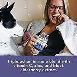 Nature's Way Sambucus Black Elderberry Gummies with